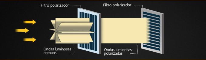 c3298f5911 Lentes polarizadas: o que você precisa saber - Blog Ponto de Vista ...
